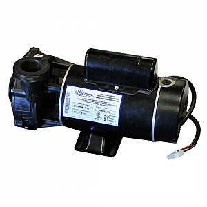 1.5 HP Pump - 2 Speed, 110 Volt, 60Hz