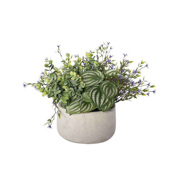 Centrepiece with peperomias, small purple flowers and mixed greens in cement planter