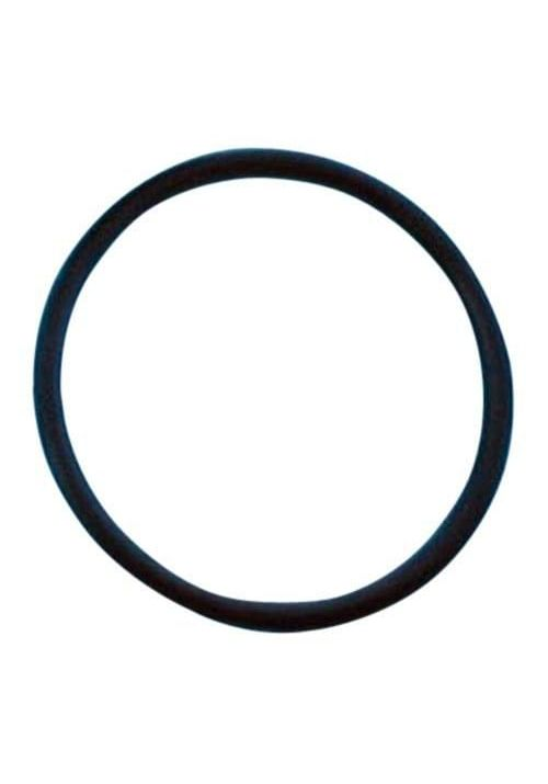 O-ring For LM2 Salt System